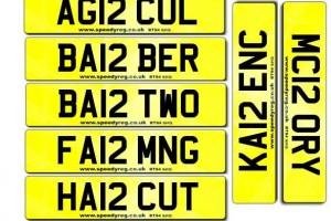 12 Numberplates