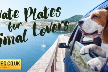 Animal Lover Number Plates