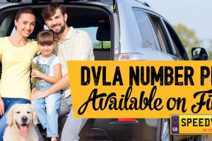 SpeedyReg_DVLA_Finance