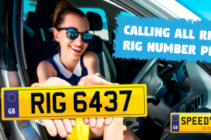 5-calling-all-rigbys