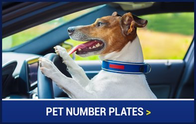 Pet Number Plates