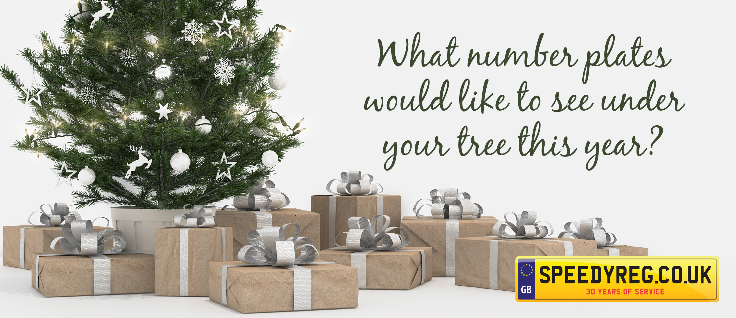 11-what-number-plates-would-like-to-see-under-your-tree-this-year