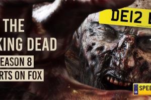 The Walking Dead Number Plates - Speedy Reg