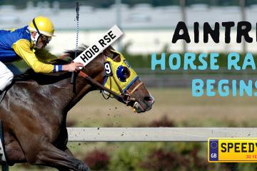 Aintree Horse Racing Number Plates - Speedy Reg