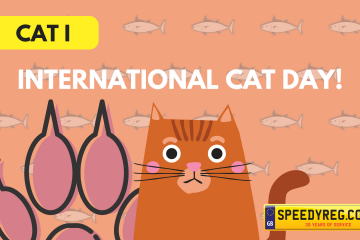International Cat Day Number Plates - Speedy Reg