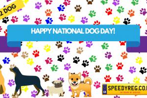 Happy National Dog Day Number Plates - Speedy Reg