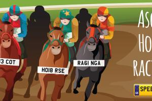 Ascot Horse Racing Number Plates- Speedyreg