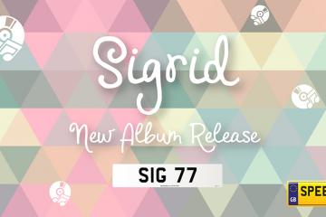 SIG Number Plates - Speedy Reg