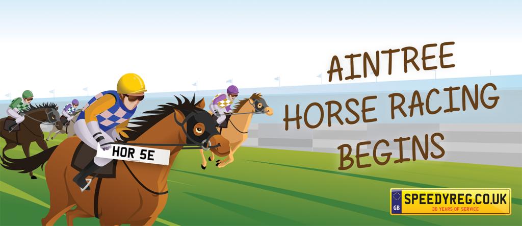 Horse Number Plates- Speedy Reg