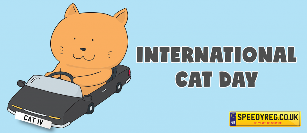 International Cat Day - Speedyreg